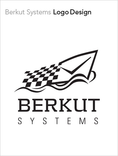 Berkut Systems Logo Design
